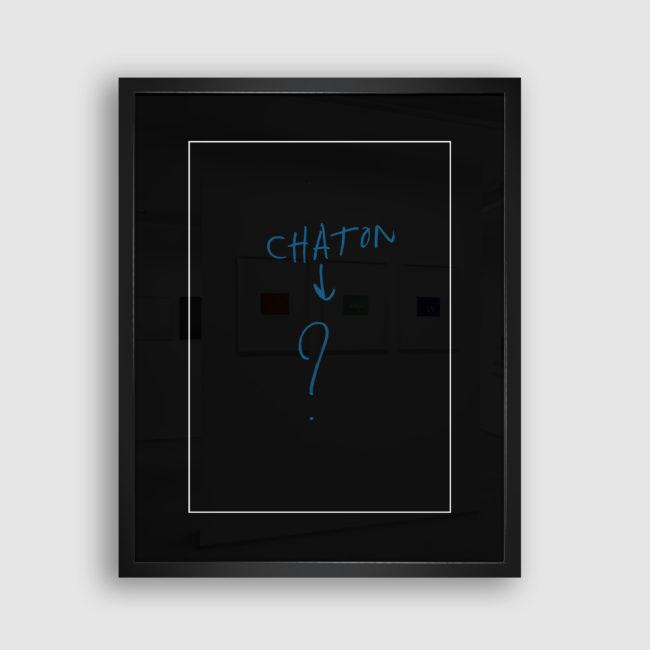 Autoportrait de Chaton, Collection Trombinoscope © adscite, Alexandre Fisselier et Mathilde François